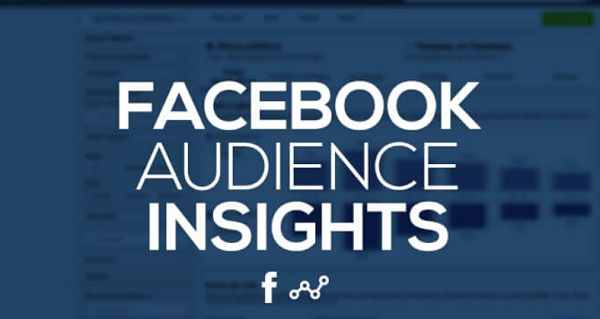facebook audience insights not working